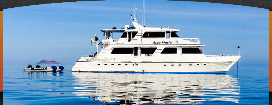 Galapagos islands cruises , Aida Maria Yacht